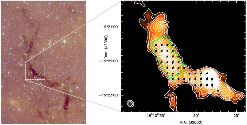"""""""蛇""""的磁场,右图中的箭头代表磁场方向,来自Pillai et al. 2014 图1。"""