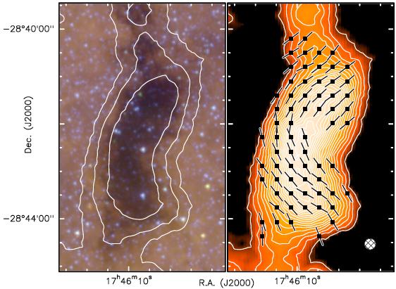 """""""肾""""的磁场,右图中箭头为磁场方向,来自Pillai et al. 2014 图2。"""